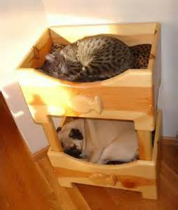 Cat Bunk Beds by Pug N Bunk Bed Animals