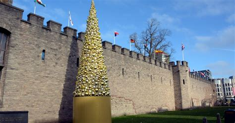 cardiff s christmas tree cost 163 30 000 we found a real