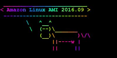 amazon linux now available amazon linux ami 2016 09 aws news blog