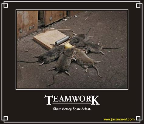 Teamwork Memes - teamwork office funny quotes quotesgram