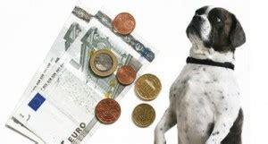 Ab Wann Hundesteuer Bezahlen
