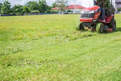 winter lawn care how to conduct lawn care in winter a green hand
