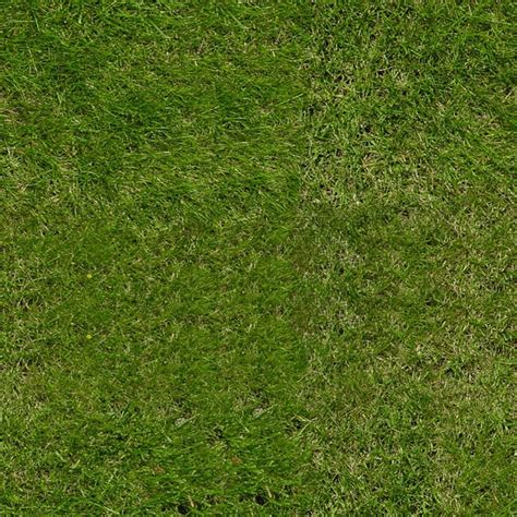 green grass  royalty  texture