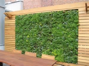 outdoor walls design in gardens joy studio design
