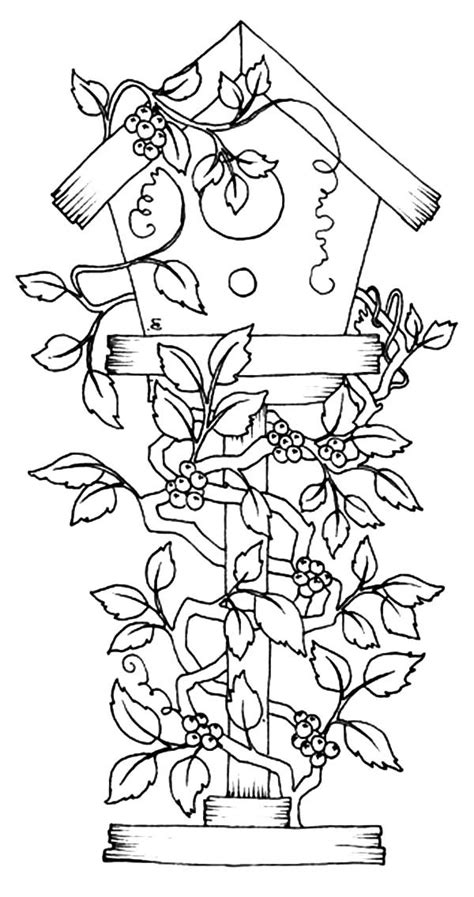 coloring pages of birds and flowers free coloring pages of birds and flowers