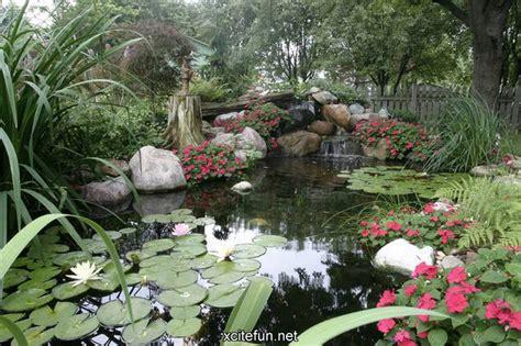 aqua gardens  watery landscape xcitefunnet
