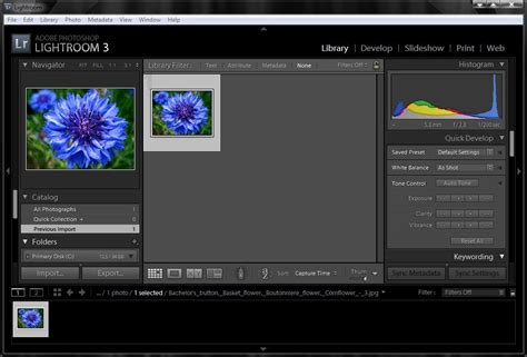 lightroom to photoshop workflow adobe photoshop lightroom alternatives and similar