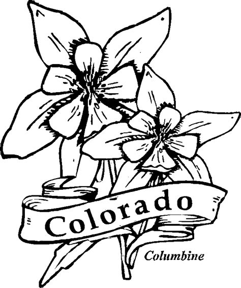 coloring pictures of state flowers 50 state flowers coloring pages for