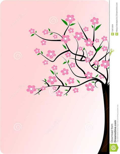 Cherry Blossom Tree Wall Sticker cherry blossom tree stock images image 13875994