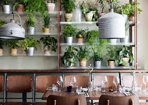 interior garden plants design studio creates an indoor garden for a restaurant