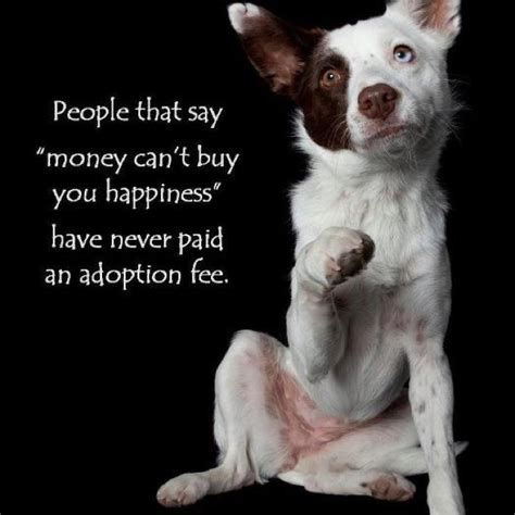 To Adopt by Don T Buy A Pet Adopt One Dogs Our Best Friends
