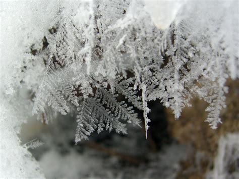snow pictures snowflake