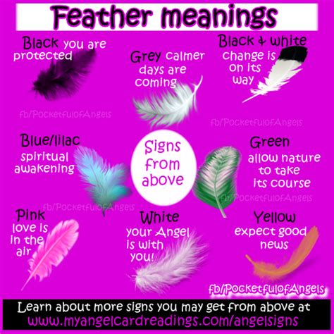 feather color meanings white feather meaning pictures to pin on pinsdaddy