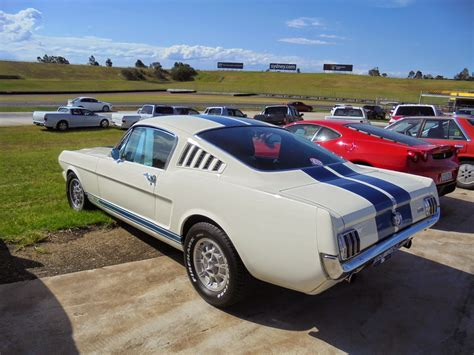 aussie mustang aussie parked cars 1965 shelby mustang gt 350