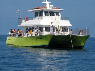 party boat fishing guides reservation party boat fishing trip key west travel guide