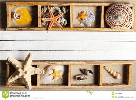 Marine Shelf by Marine Shelf Stock Photo Image 57026143
