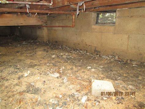 basement humidity level gazebo kits with pit small