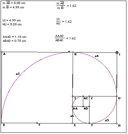 golden section dimensions golden ratio
