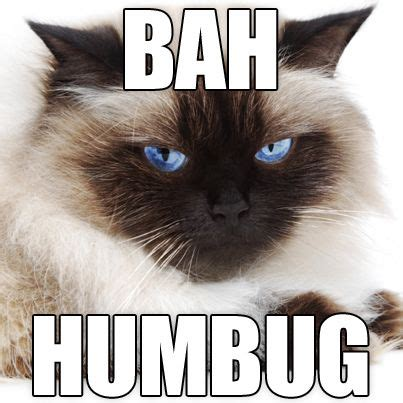 Bah Humbug Meme - bah humbug meme 28 images grumpy cat meme grumpycat