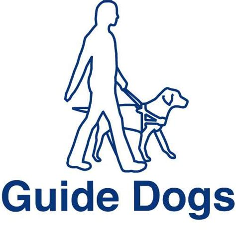 guide dogs for the blind rapp wins guide dogs for the blind brand caign the drum