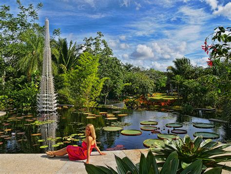 Botanical Gardens Naples Fantastic And Cultural Attractions In Naples Florida