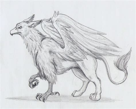 griffin sketch by deorwyn on deviantart