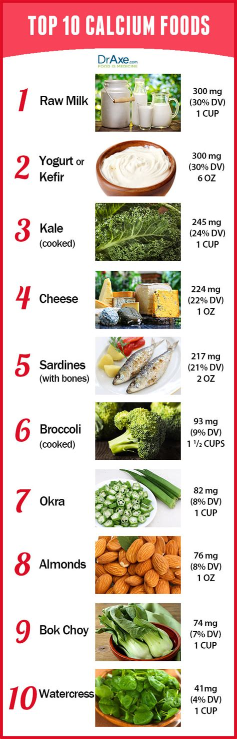 food the best nutrition for your four legged friend books top 10 calcium rich foods draxe