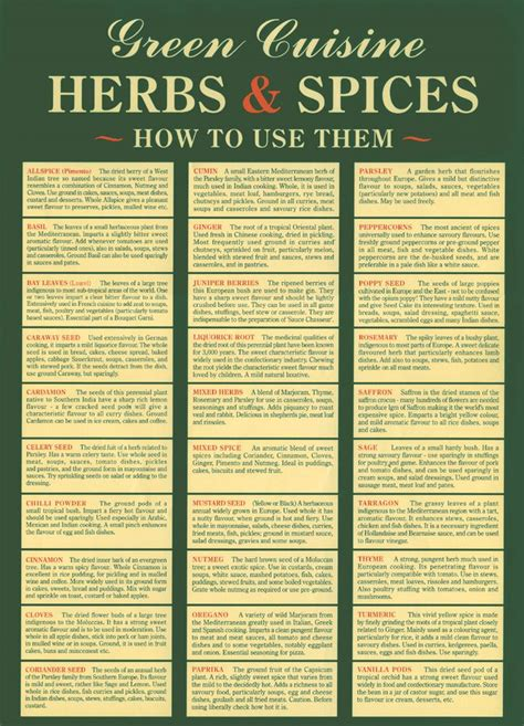 herbs chart best 25 spice chart ideas on pinterest spices how to