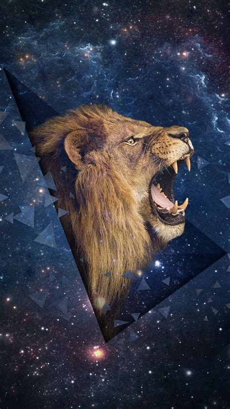 iphone wallpaper hd lion lion iphone 6 wallpaper top 49 lion iphone 6 pictures