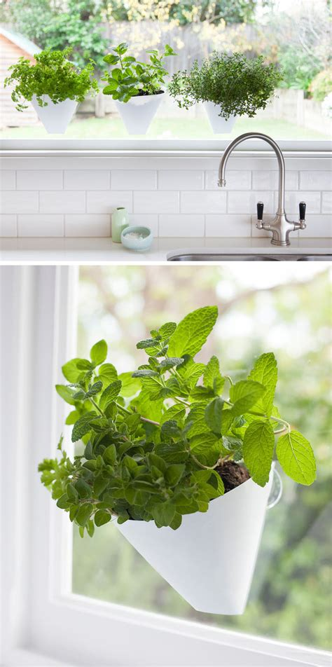 window planters indoor indoor garden idea hang your plants from the ceiling walls contemporist