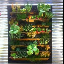 Amazing Plantes Pour Mur Vegetal Exterieur #10: Mini-mur-végétal.jpg