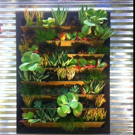 Formidable Mur Vegetal Interieur Pas Cher #1: mini-mur-v%C3%A9g%C3%A9tal.jpg