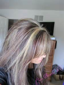 highlights for grey hair pictures brown hair with grey highlights dark brown hairs