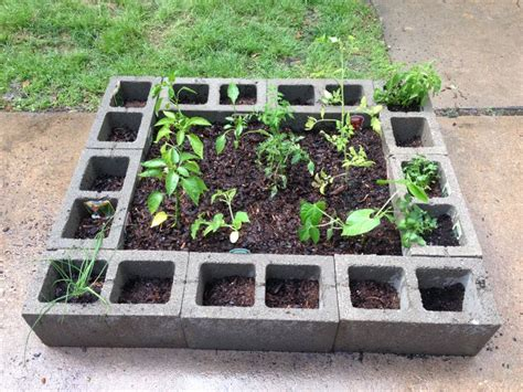 cinder block vegetable garden ideas for the garden