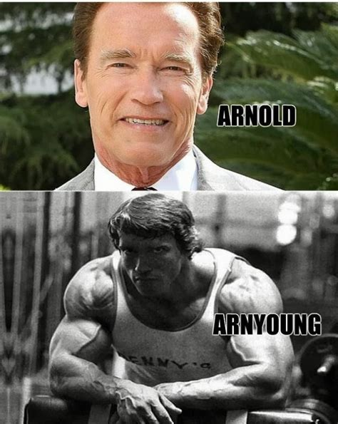 Arnold Meme - my life in movies my 5 favorite arnold schwarzenegger movies