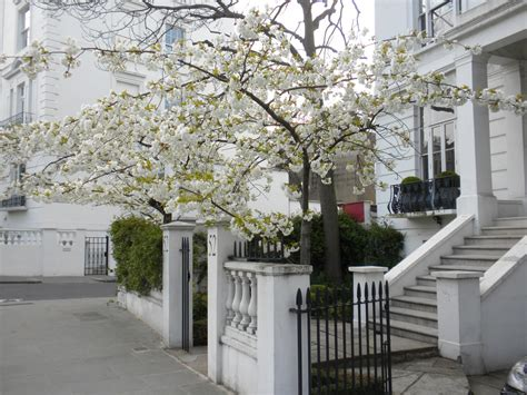 panchina di notting hill cosa vedere a notting hill