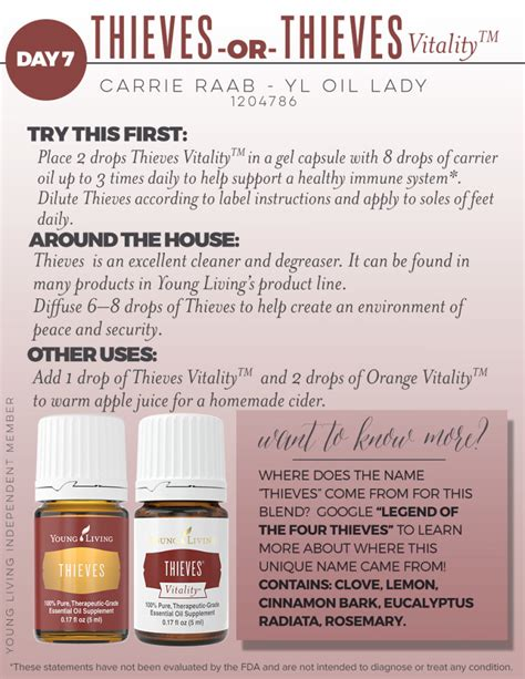 using thieves in your kitchen the oily home companion day 7 thieves essential oil yl oil lady a christian