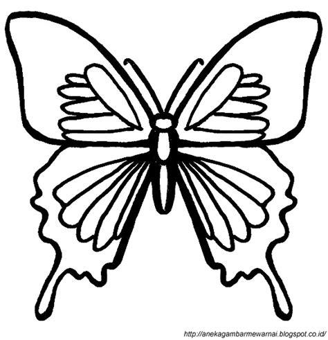 gambar kupu kupu untuk tato gambar mewarnai kupu kupu untuk anak paud dan tk