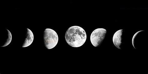 Pflanzen Nach Dem Mond 4988 by G 228 Rtnern Mit Dem Mond