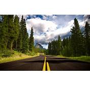 Trees Nature Road Forest Landscape Sky Mountain