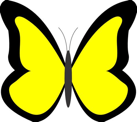 clipart co butterflies image cliparts co