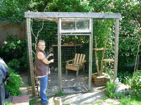 patios  gatos seguros  confortables blog de hogarmania