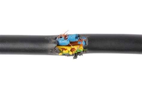 frayed electrical wire frayed or damaged electrical cords should you diy