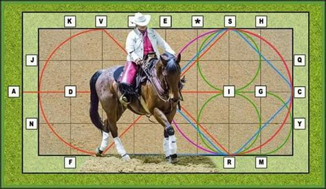 cowboy dressage and competing with kindness as the goal and guiding principle books 42 best images about cowboy dressage on