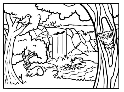 tiger woods coloring page woods animals coloring pages for adults woods best free