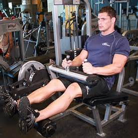 seated leg press calories burned abs diet nethues technologies