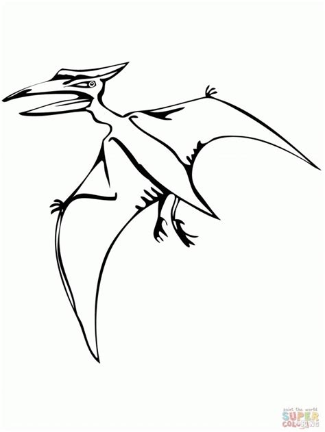 pteranodon coloring pages coloring home