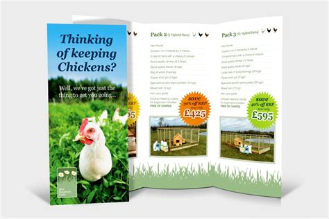 leaflet design rules 9 rules for starting your own poultry farm