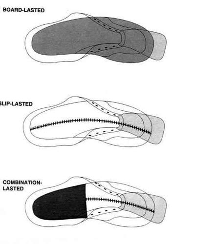 anatomy of an athletic footwear faculty of medicine
