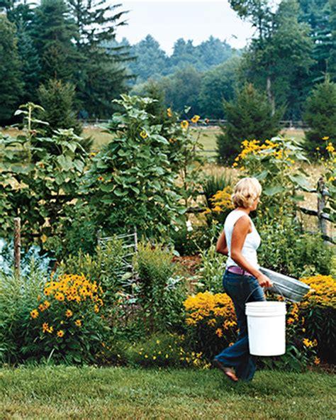 herb garden basics pinpoint